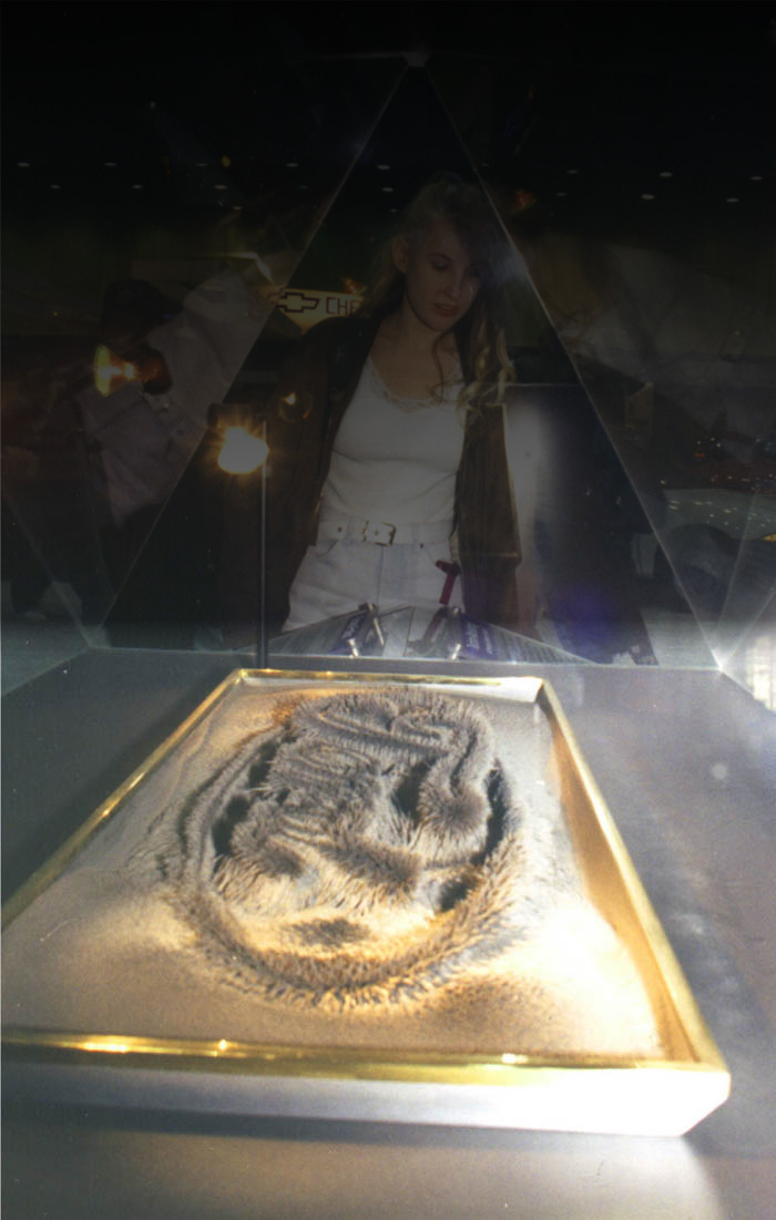 Magnetic Dancing Iron Dust Interactive Museum Exhibit